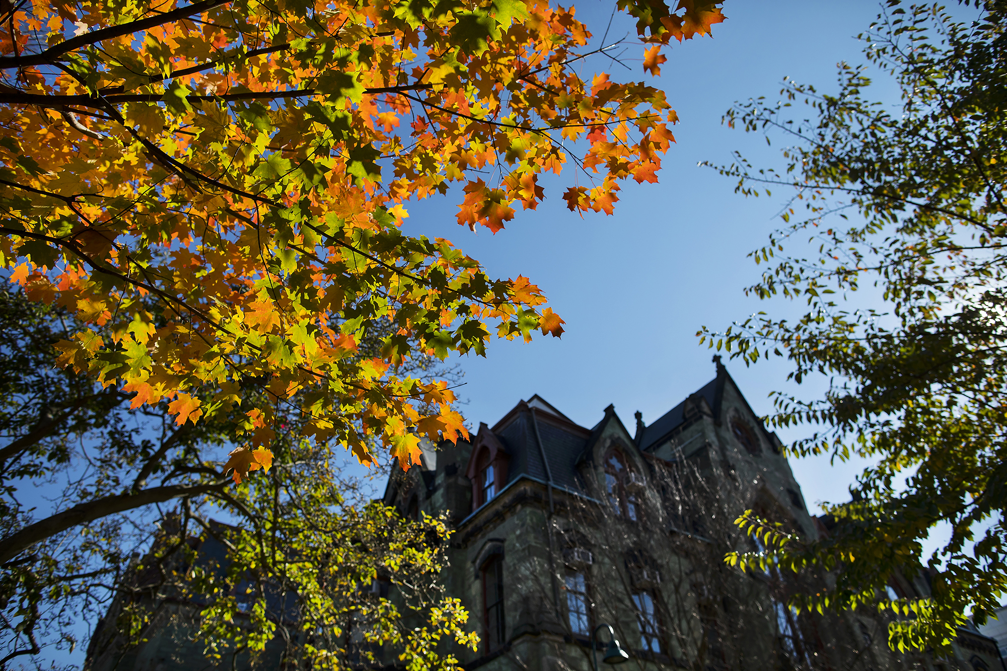 college hall with fall leaves