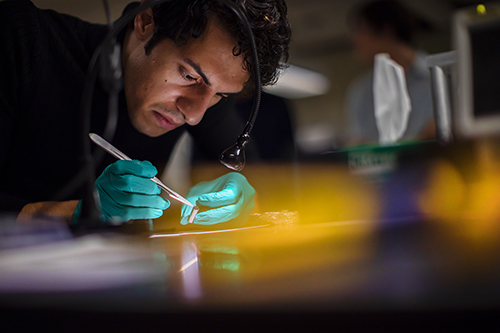 researcher working with nanocardboard